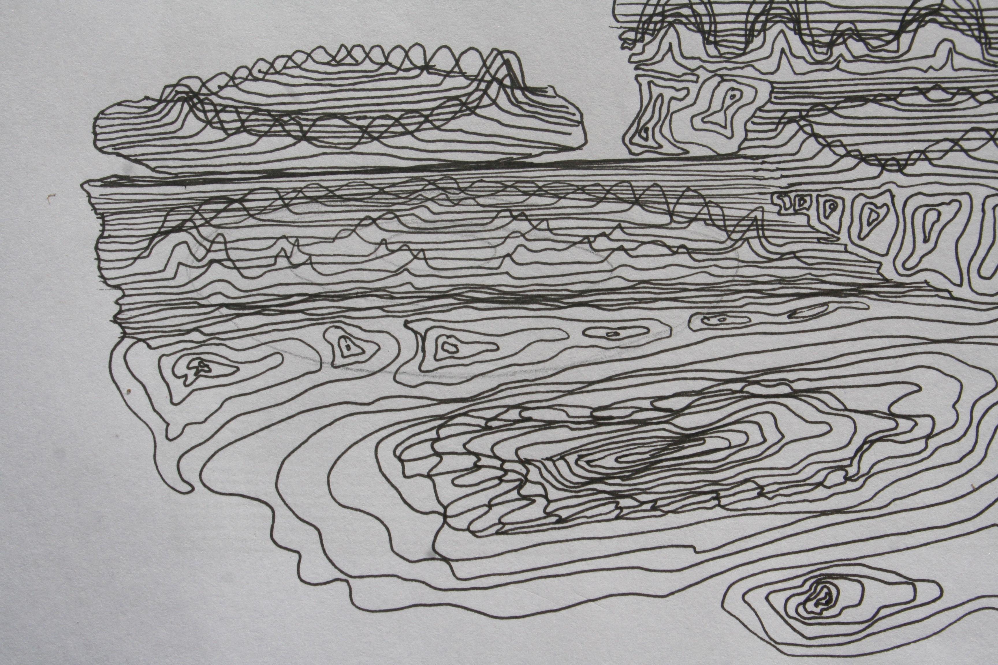 lip - 2011 - pen; paper