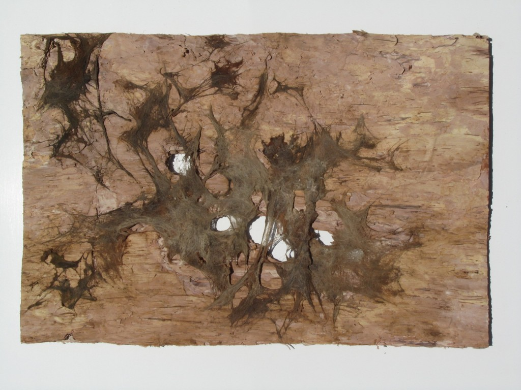 skin - 2011 - wood; paper; coffee