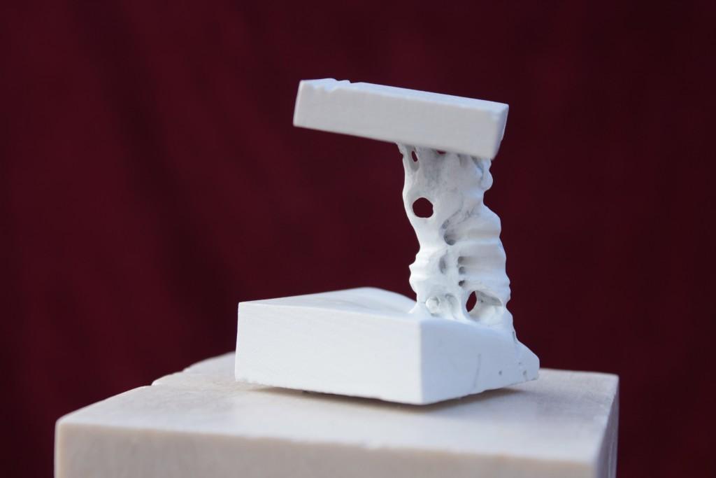 backbone - 2015 - marble