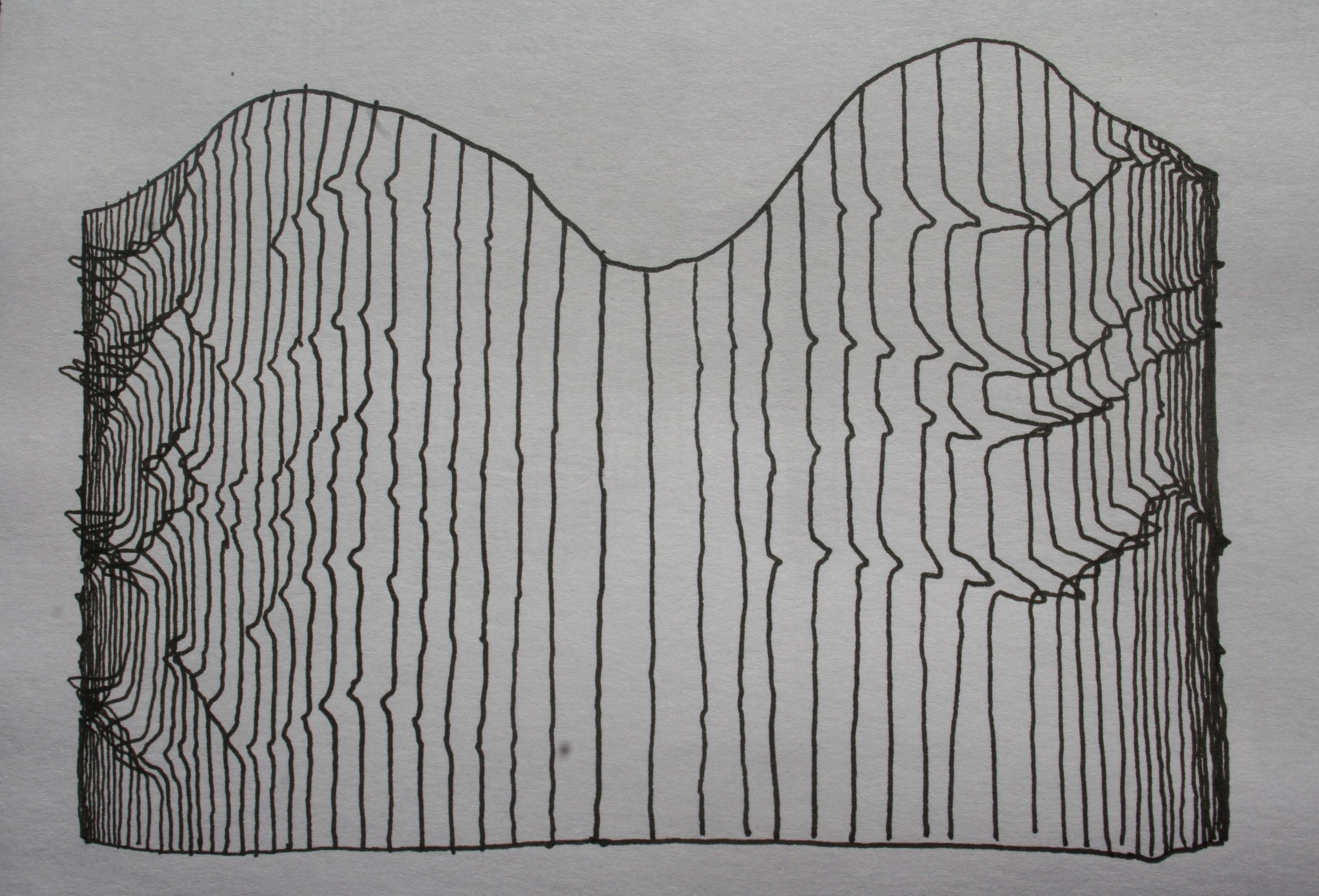fibre curve - 2011 - ink; paper